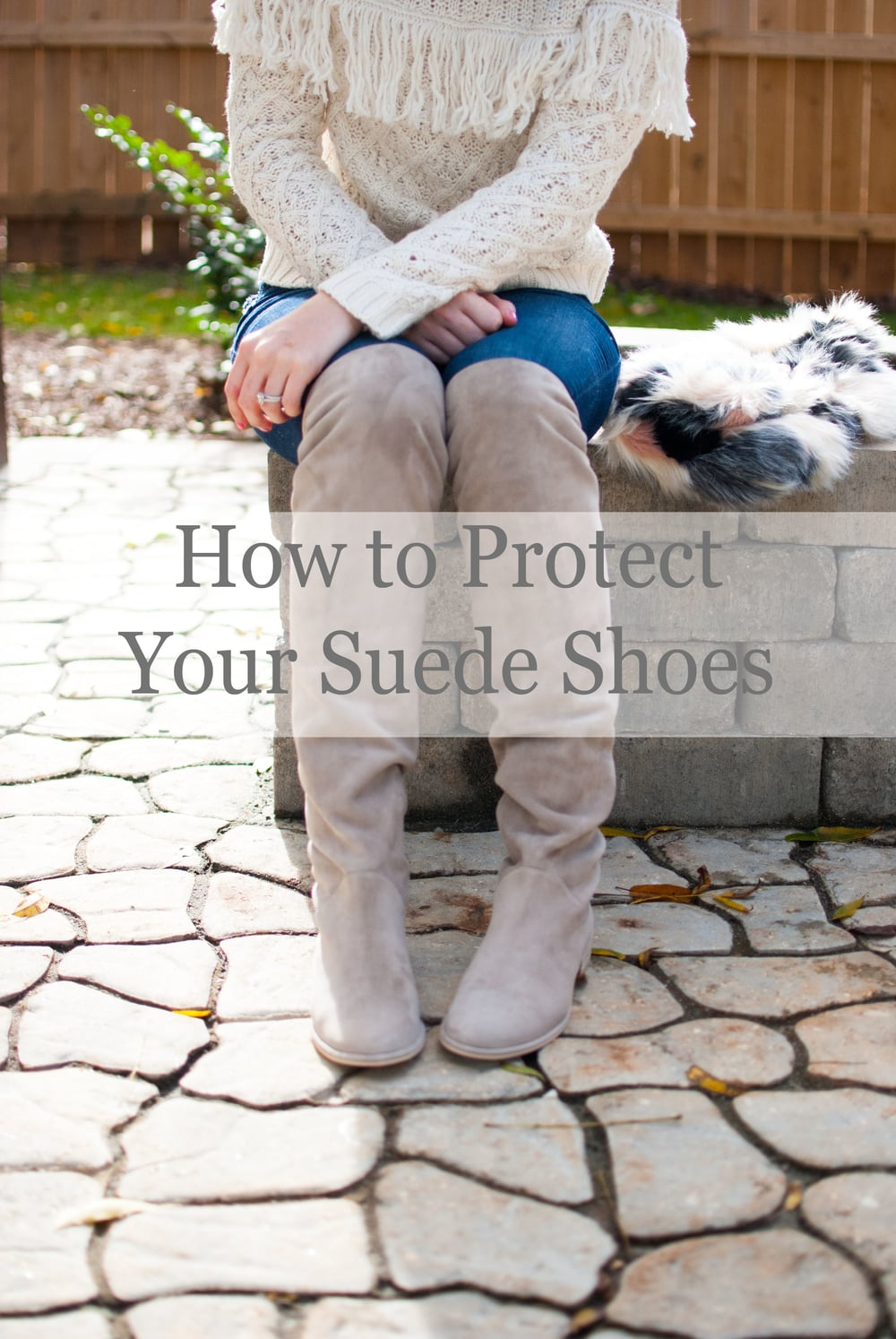 tidy tuesday how to protect suede shoes polished closets